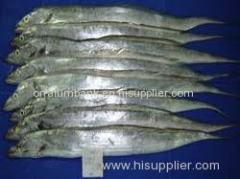 Ribbon Fish Sea Food