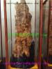 Zitan Buddha beads- eaglewood-3