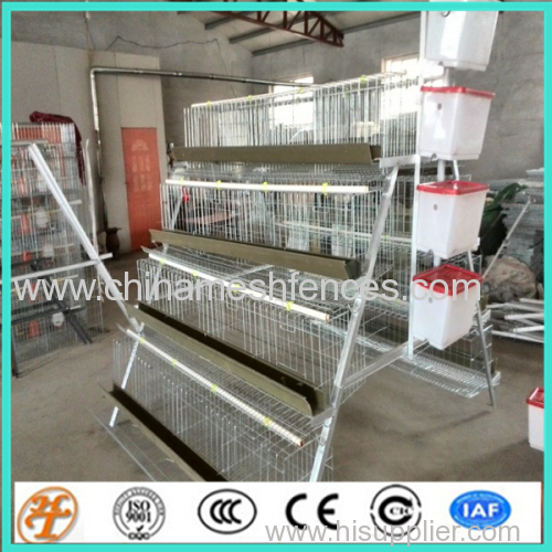 layer chicken coop cages