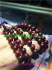 Vietnam pear wood Buddha beads-Yellow pear-5