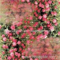 Digital Print Silk Shawl Manufacturer China