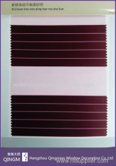 Stripe Pattern Manual Window Zebra Blind With Double Layer Day Night Fabric