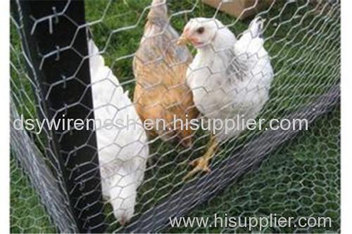 hexagonal wire mesh chicken wire mesh