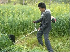 walking harvester rice harvester