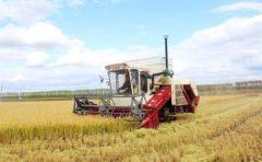 Mini combine rice harvester