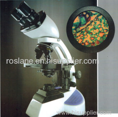 Pathology Binocular Microscope