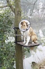 Cadre en acier pour chien