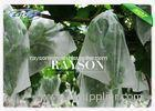 Banana Tree Farm Used Non Woven Fruit Tree Protection Bag To Thailand Market