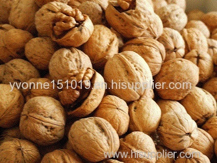 walnut dried nuts dried fruits