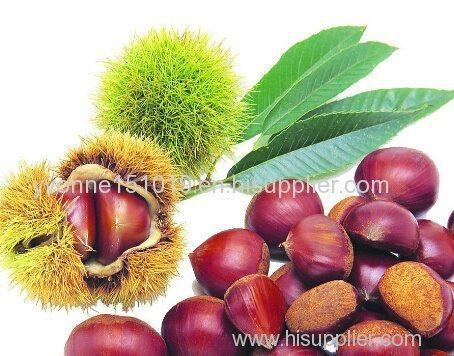 fresh chestnut dried fruits