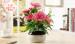 factory ceramic vase china