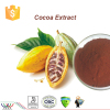 Natural cocoa seed extract
