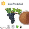 antioxidant grape vine extract