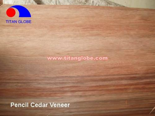 Natural Wood Veneer For Plywood / Cheap Hardwood Veneer / MLH Veneer - Titan Globe
