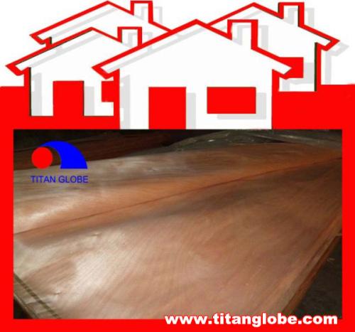 Rotary Cut Face Veneer / Hardwood Wood Veneer Face / MLH Veneer - Titan Globe