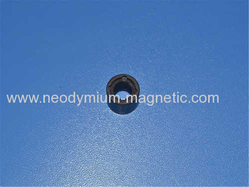 RING PA12 PA6 plastic injection ferrite magnet for motors