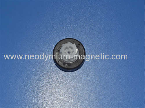 PA6 PA12 PPS plastic ferrite injected magnet for Drainage rotor