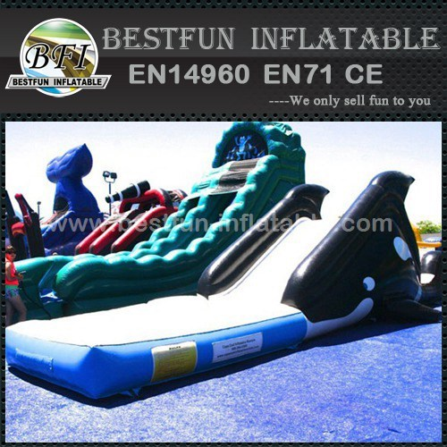 Whale Inflatable Water Slide