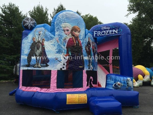 Frozen inflatable bouncy castle with water slide