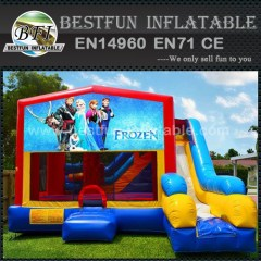 Commercial frozen inflatable bouncer with slide for sale