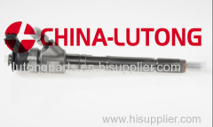 BOSCH 0 445 110 202 COMMON RAIL Injector 6130700887