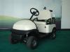 1 seat Mini electric Golf cart