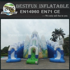 Hot Giant Inflatable Water Slide Exporter