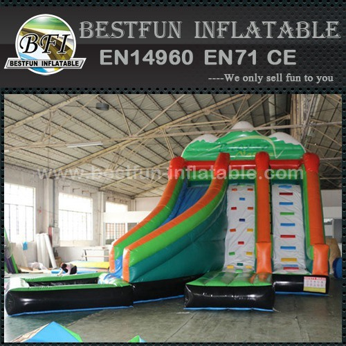 Large adult size inflatable water slide with pool