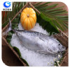 frozen seafood bonito new