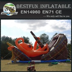 China Inflatable Kraken Dual Slide