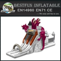 Dragon knight inflatable castle combo