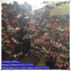 Cream quality sorted cheap price of sorted shoes used wholesale