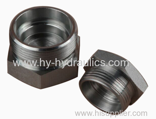 Metric pipe fitting adapter plug c d from china