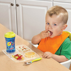 Classification of fruit and vegetable Meal mat for children
