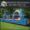 Two Persons Crazy roller coaster Inflatable Obstacle Course
