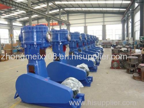 WLW Vertical Oilless Vacuum Pump
