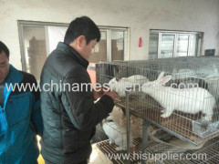 Galvanized child and mother rabbit cage commercial rabbit farming cage with tray easy clean