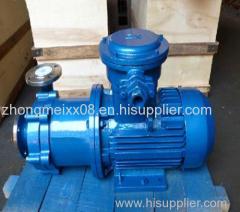 CQF magnetic drive pump