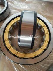 NTN Cylindrical Roller Bearings NJ1022