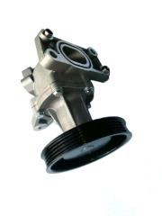 N300 WATER PUMP B12D
