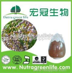 Phellodendron Bark ExtractPhellodendron Bark Extract