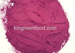 disidratati in polvere di barbabietola rossa