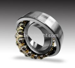 China Engine Bearing Manufacturer 1219