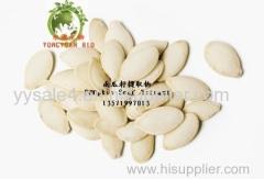 Free Samples high quality in bulk stock Cucurbita moschata Duchesne Pumpkin Seed Extract