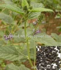manufacture lowest price supply high quality Psoralea Corylifolia Extract