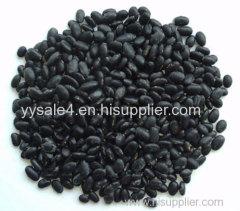 low price supply high quality Semen Sesami Nigrum powder Sesamin Extract