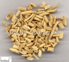 best selling products free sample Codonopsis Pilosula Extract 10:1/ Campanumaea pilosula/bastard ginseng