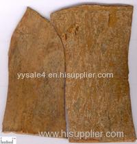 Hot Sale! Best Price 10:1 Cinnamomi Cassiae/Cinnamon Bark Extract