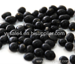 Factory Supply Organic 100% Natural and Healthy Black Bean Hull Extract Powder