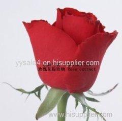 100% Natural Rose extract/ Rose petals extract 10:1 powder